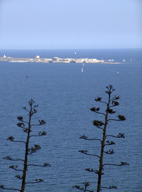 Isla de Tabarca vista desde Torre Escaletes
